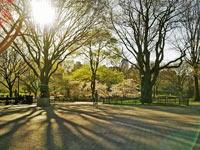 Bike ausleihen und im Central Park Fahrrad fahren