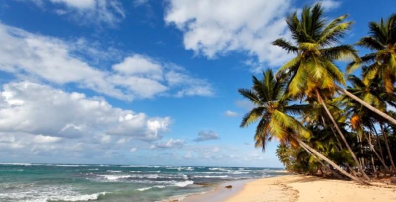 Strand mit Palmen in der Dominikanischen Republik